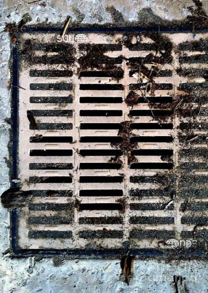 Photograph - Streets Of Coronado Island 37 by Marlene Burns