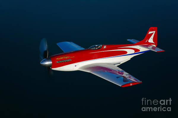 Photograph - Strega, A Highly Modified P-51d Mustang by Scott Germain