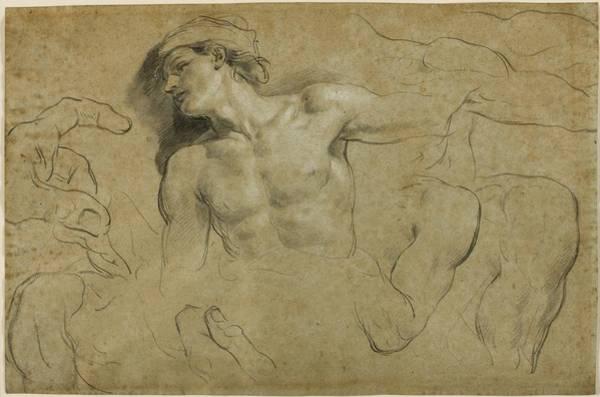 Studies Of Hands - Shoulders And A Leg Art Print