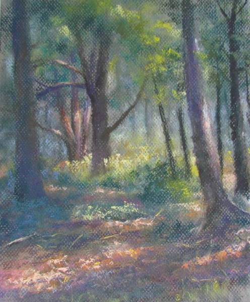 Pastel - Study For Woodland Interior by Bill Puglisi