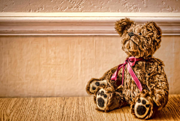 Photograph - Stuffed Friend by Heather Applegate