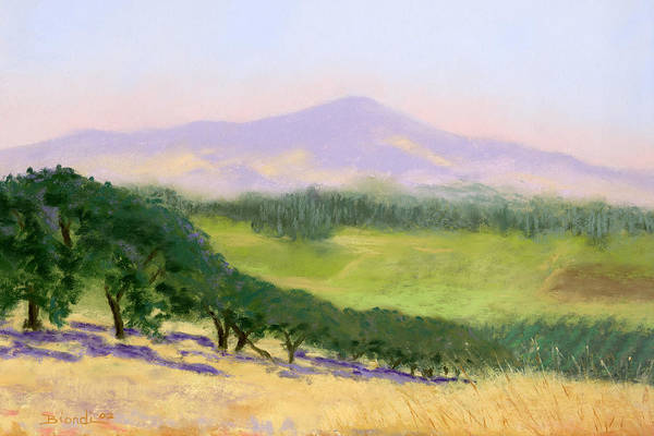Pastel - Summer Haze by Janet Biondi