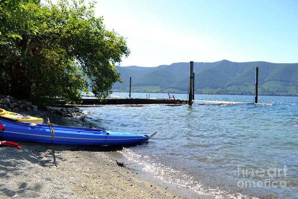 Photograph - Summer Kayak by Traci Cottingham