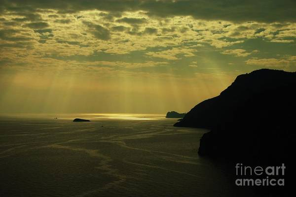 Wall Art - Photograph - Summer Rays by Dennis Curry