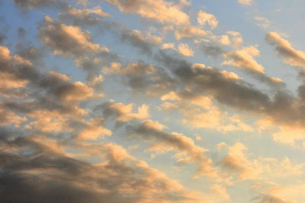 Photograph - Summer Sky by Angela Rath