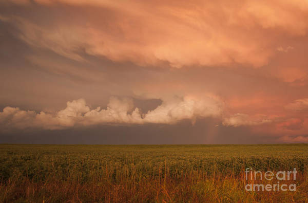 Photograph - Summer Storm by Pam  Holdsworth