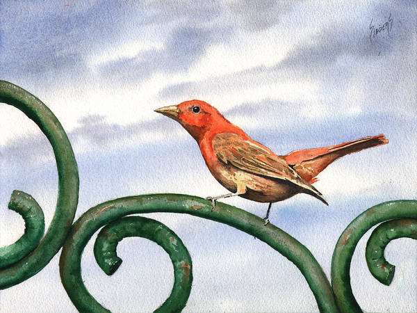 Painting - Summer Tanager by Sam Sidders