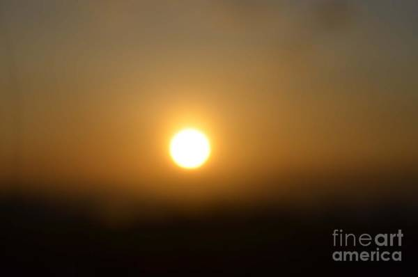 Photograph - Sun by Christopher Shellhammer