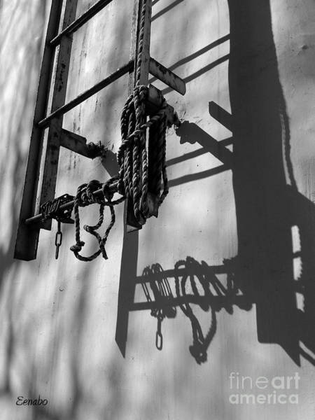 Photograph - Sun Play by Eena Bo