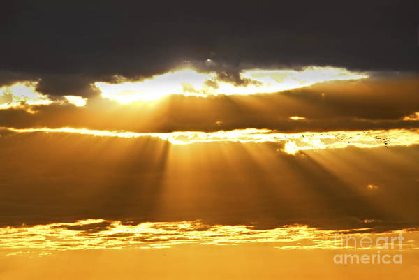 Sun Set Photograph - Sun Rays At Sunset Sky by Elena Elisseeva