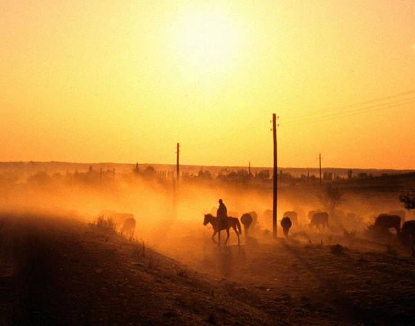 Radford Photograph - Sun Sets For The Cowboy by taken by Richard Radford