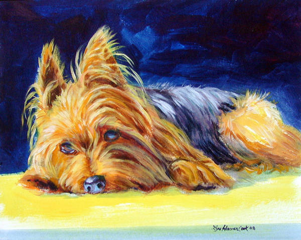Yorkie Wall Art - Painting - Sun Spot Yorkshire Terrier by Lyn Cook