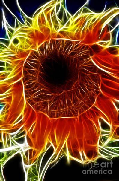 Photograph - Sunflower Fractal by Donna Greene