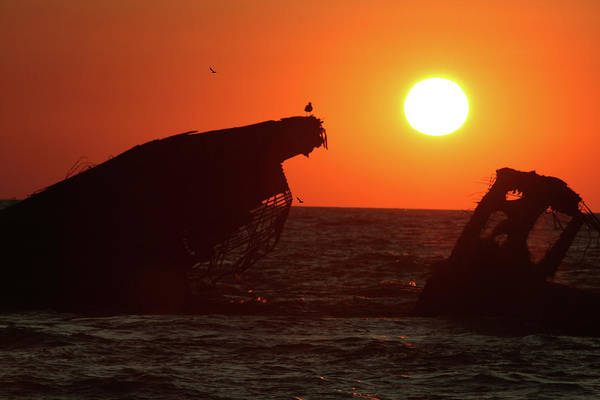 Photograph - Sunken Ship Sunset by Tom Singleton