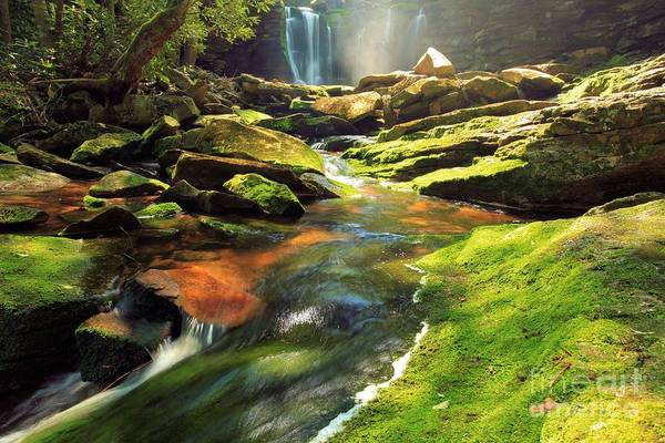 Photograph - Sunlight Rainbow Falls by Adam Jewell