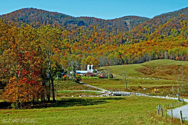 Photograph - Sunny Day At The Blue Ridge Parkway by Sheila Kay McIntyre