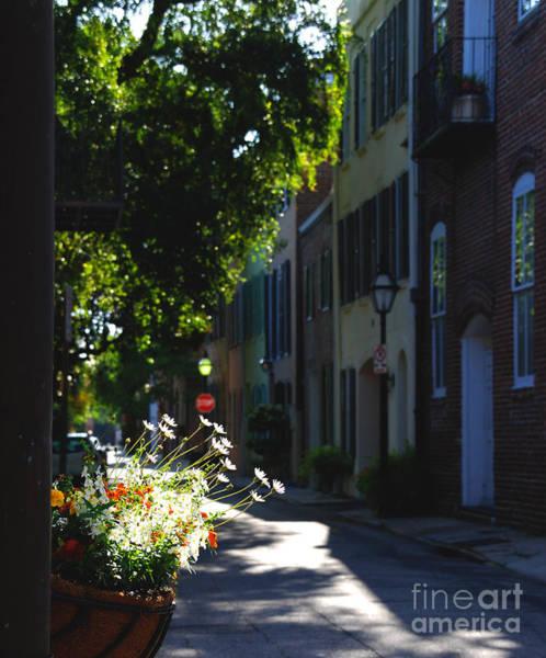 Photograph - Sunny Lane In Charleston South Carolina by Susanne Van Hulst