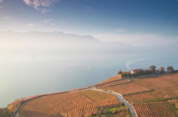 Lake Geneva Photograph - Sunrise At Lavaux Vineyard Terraces by Harri's Photography