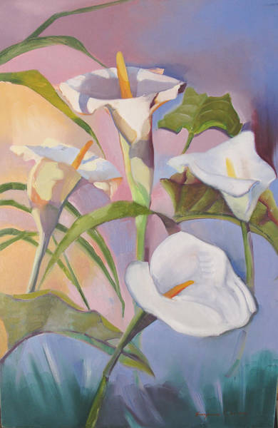 Sunrise Callas Art Print
