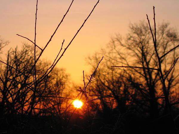 Aurore Photograph - sunrise in La Creuse by Emilie Broudy-Masson
