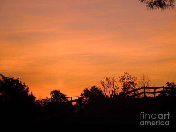 Wall Art - Photograph - Sunrise In November by Pauline Ross