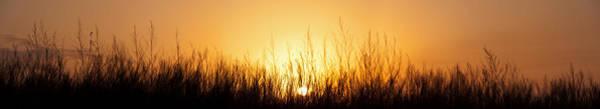 Wall Art - Photograph - Sunrise Over Nachusa Grasslands by Steve Gadomski