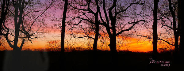 Photograph - Sunrise Panorama by Ericamaxine Price