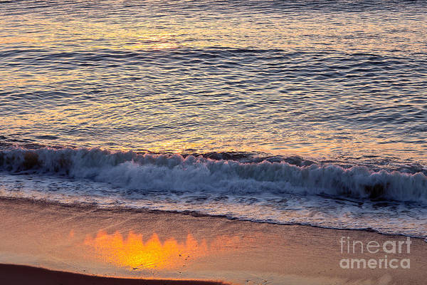 Photograph - Sunrise Shadow by Susan Cole Kelly