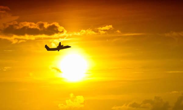 Photograph - Sunset Flight by Daniel Marcion
