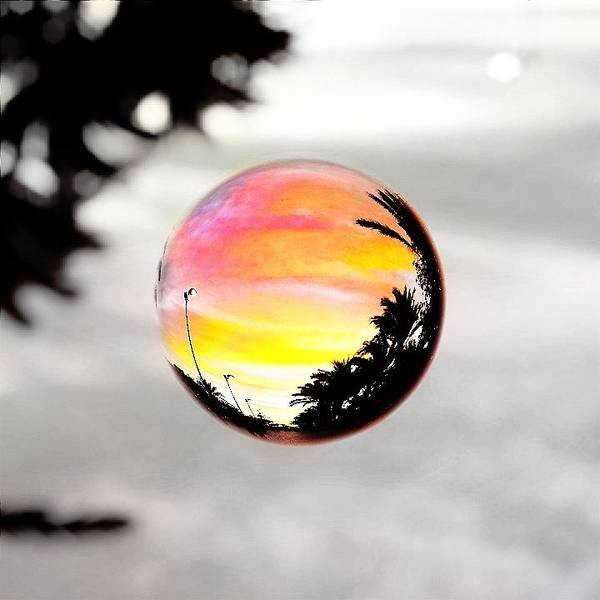 Photograph - Sunset In A Bubble by Marianna Mills