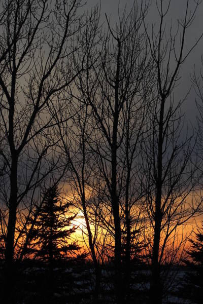 Christy Photograph - Sunset In Minot by Christy Patino