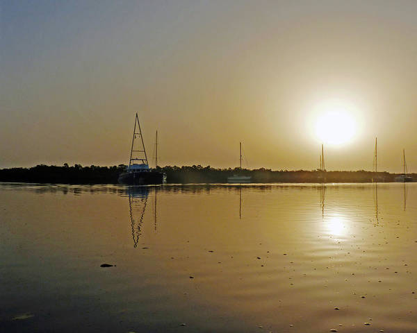 Photograph - Sunset In The Gambia by Tony Murtagh