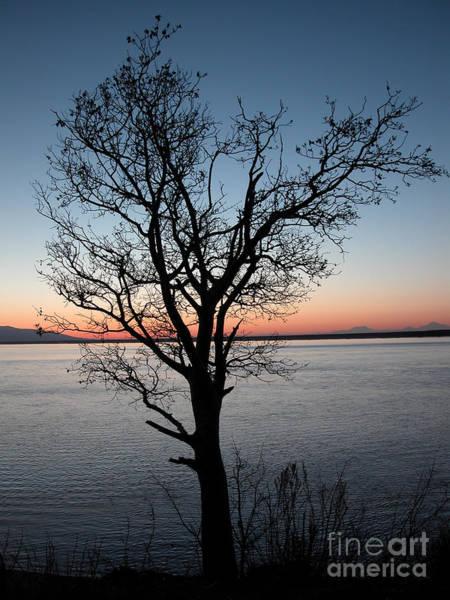 Sunset On Cook Inlet And Alaska Range Art Print