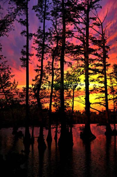 Photograph - Sunset On Horseshoe Lake 1 by Marty Koch