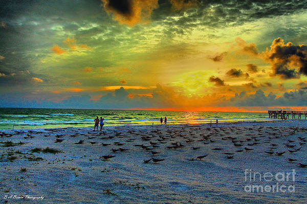 Photograph - Sunset Over Skimmer Colony by Barbara Bowen