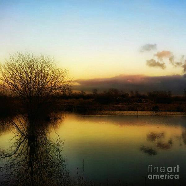 View Wall Art - Photograph - Sunset Over The Lake by Abbie Shores