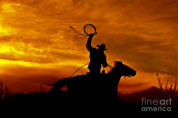 Silhoutte Photograph - Sunset Round-up by Heather Swan