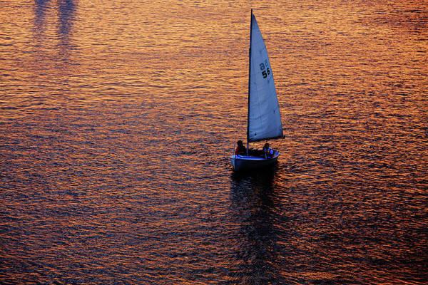 Photograph - Sunset Sailing by Rick Berk