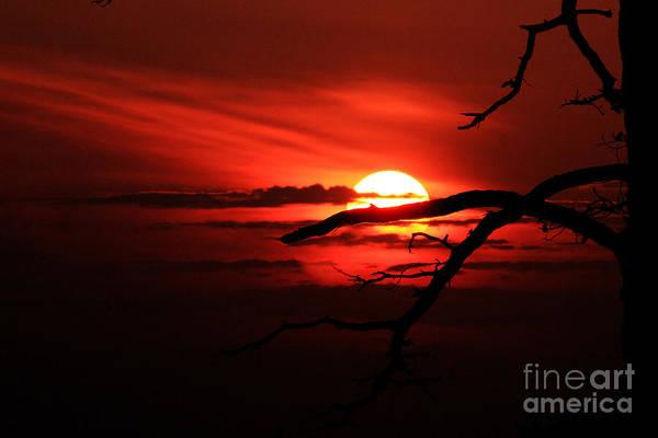 Sunset Zen Art Print