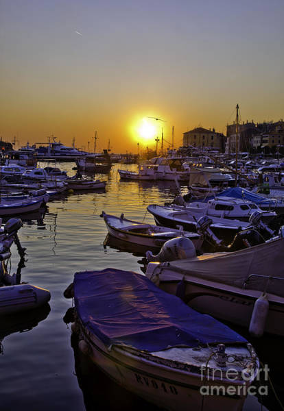 Wall Art - Photograph - Sunsetting Over Rovinj 2 by Madeline Ellis