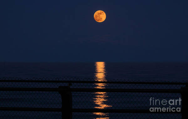 Perigee Moon Photograph - Super Moon Rising by Charline Xia