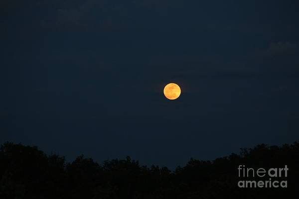 Wall Art - Photograph - Supermoon Rising by Pauline Ross