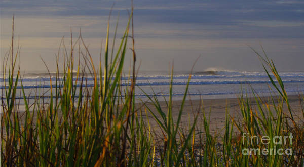 Wall Art - Photograph - Surf Through The Sea Oats by Jon Hartman