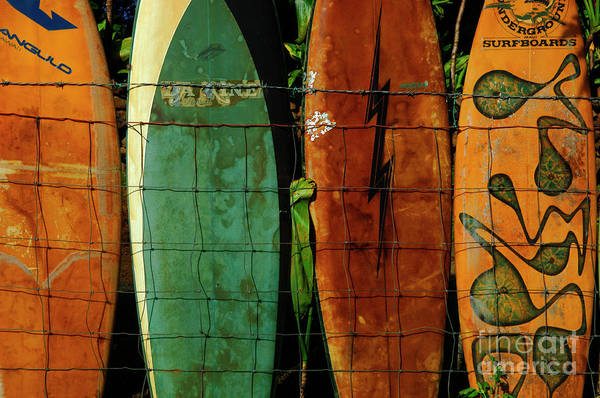 Lanai Photograph - Surfboard Fence 1 by Bob Christopher