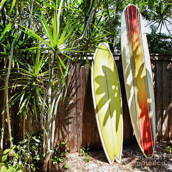 Surfboard Fence Photograph - Surfboards Leaning Against A Fence by Skip Nall