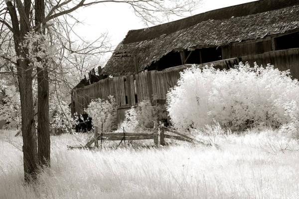 Infrared Photograph - Surreal Infrared Sepia Michigan Barn Nature Scene by Kathy Fornal