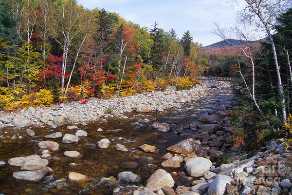 Pemigewasset River Wall Art - Photograph - Suspension Bridge Over The Pemigwasset River  by George Oze