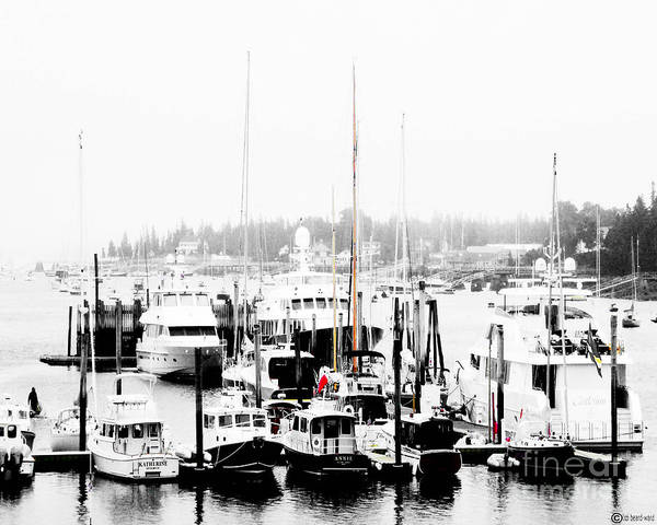 Digital Art - Sw Harbor Maine by Lizi Beard-Ward
