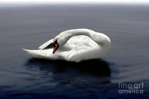 Digital Art - Swan Posing by Dale   Ford
