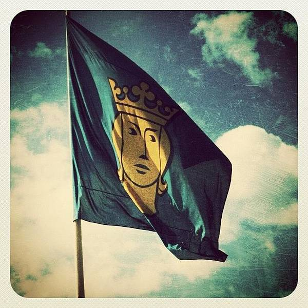Sweden Wall Art - Photograph - Swedish Flag by Natasha Marco
